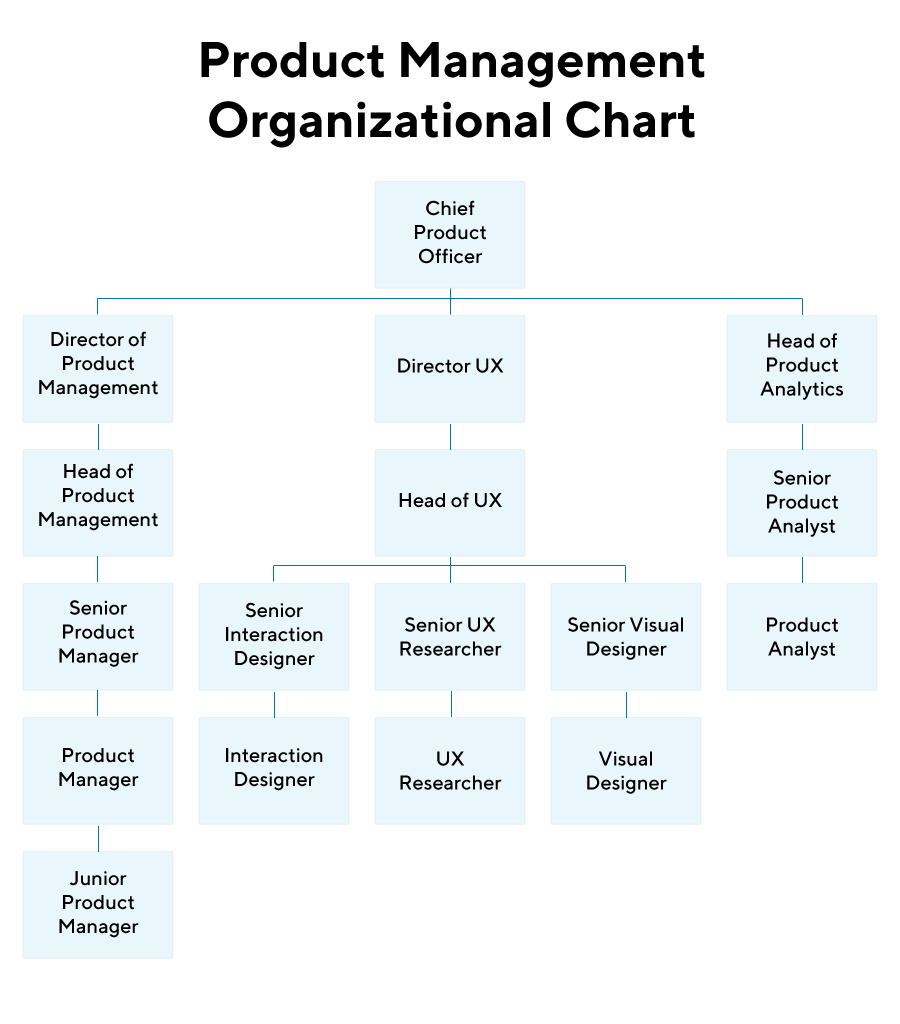 Product Management Organizational Chart by ProductPlan